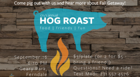 hog-roast